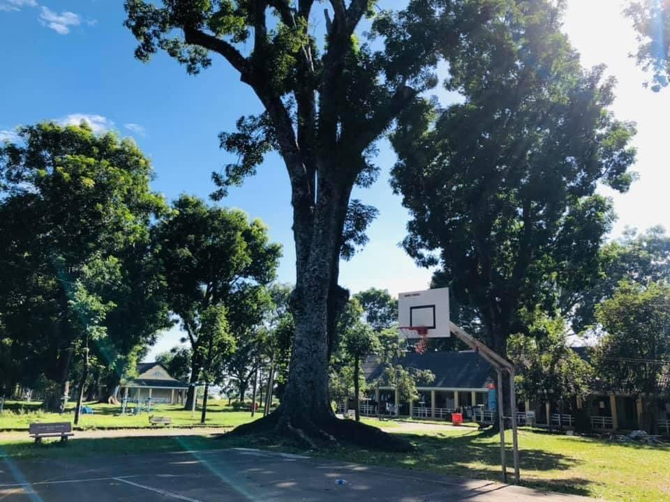 Sân bóng rổ